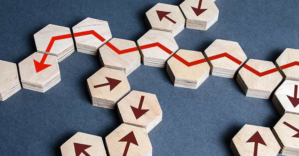 Risk Management: The CEO's New Imperative